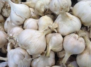 Allicin rich immune boosting garlic