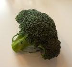 Cancer protective broccoli